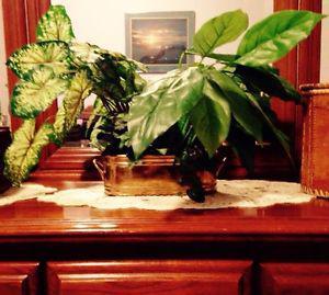 Artificial Indoor Plant