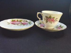 Bone China Tea Cup with 2 Saucers