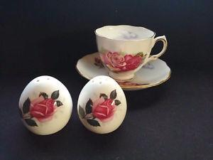 Bone China Tea Cup with Saucer and Salt & Pepper shaker