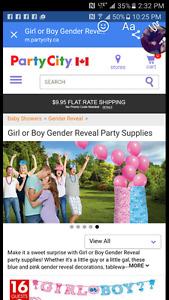 Gender reveal bag