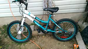 22 in, 5 speed kids bike
