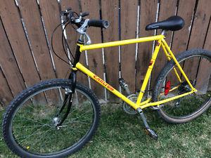 Carlton 18 speed mountain bike, (26 Inch tires)