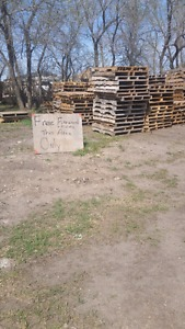 Free firewood and Pallets