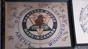 Manitoba moose autographs