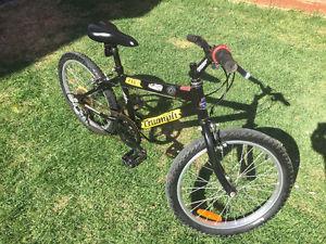 """Raleigh Triumph kids bike (20"""" wheels"""