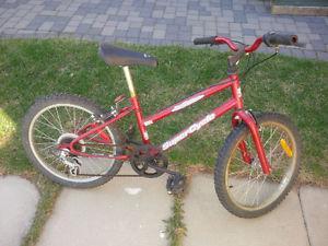 Supercycle Mountain Bike