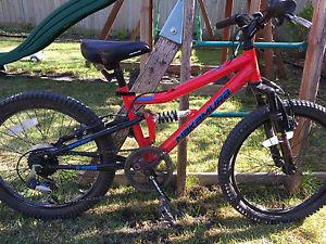 "Wanted: Kids mountain bike 20"" tires"