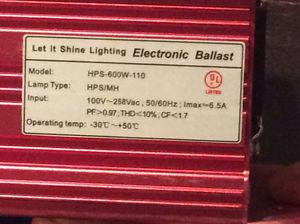 600 Watt Electronic Ballast