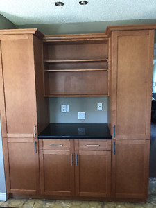 Pantry/Storage Unit with bookshelves and quartz countertop