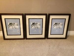 Set of 3 11x14 Frames