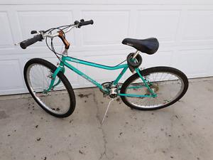 BRC mountain bike