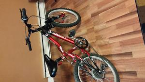 Kids 6 speed mountain bike