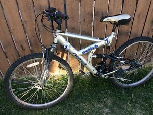Arashi 21 speed mountain bike, (26 Inch tires)
