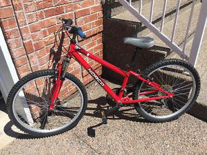 Boys Norco 24 inch Mountain Bike