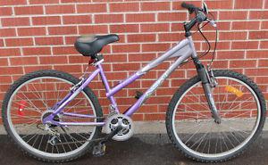 Next Sunset 21 Speed Mountain Bike
