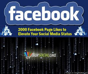 Facebook Page Likes To Elevate Your Social Media Status