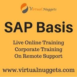 SAP Basis Online Training p VirtualNuggets OFFERED