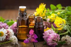 Best Aromatherapy experts in Mississauga Toronto Health Beauty