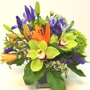 Choose Best Florists Shop in Ottawa Canada Phulerodola FOR SALE