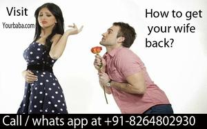 How to get your wife back by astrologer expert 91  OFFERED
