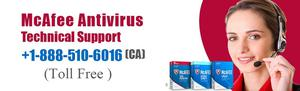 Get 24 7 McAfee Antivirus Support at  SERVICES
