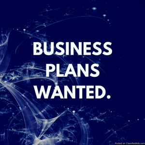 Business Plan Wanted