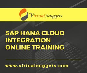 SAP HCI Online Training Business Products Services
