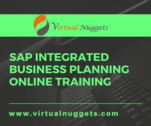 SAP IBP Online Training OFFERED