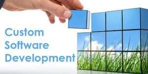 Best Custom Software Development Company in India SERVICES