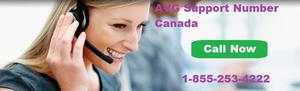 Avg Customer Support Canada Contact Number  SERVICES