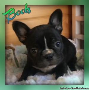 Boots: Female Frenchton