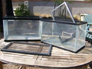Aquarium: 10 Gallon with Screen Lid