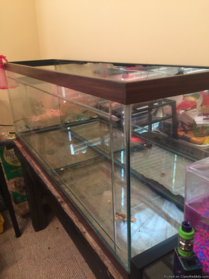75 Gallon Aquarium top/ & stand