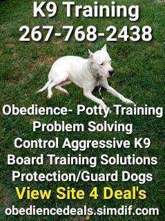 Training solutions problem solving any dog