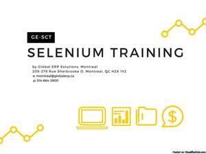 Selenium Training in Montreal