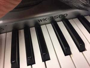 Professional CASIO WK-350 Sensitive Keyboard Organ Stereo