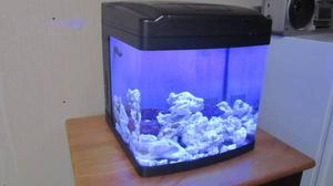Oceanic Bio cube with coral base rock
