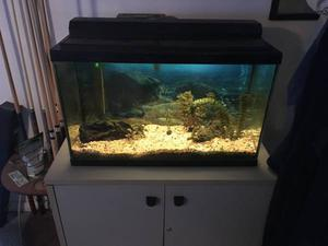 30 Gallon (Empty) Fish Tank complete with accessories and