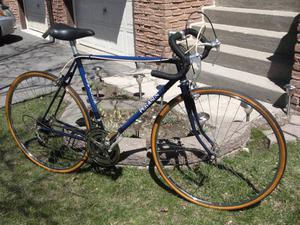 .Pegasus 10 Speed Road Bicycle