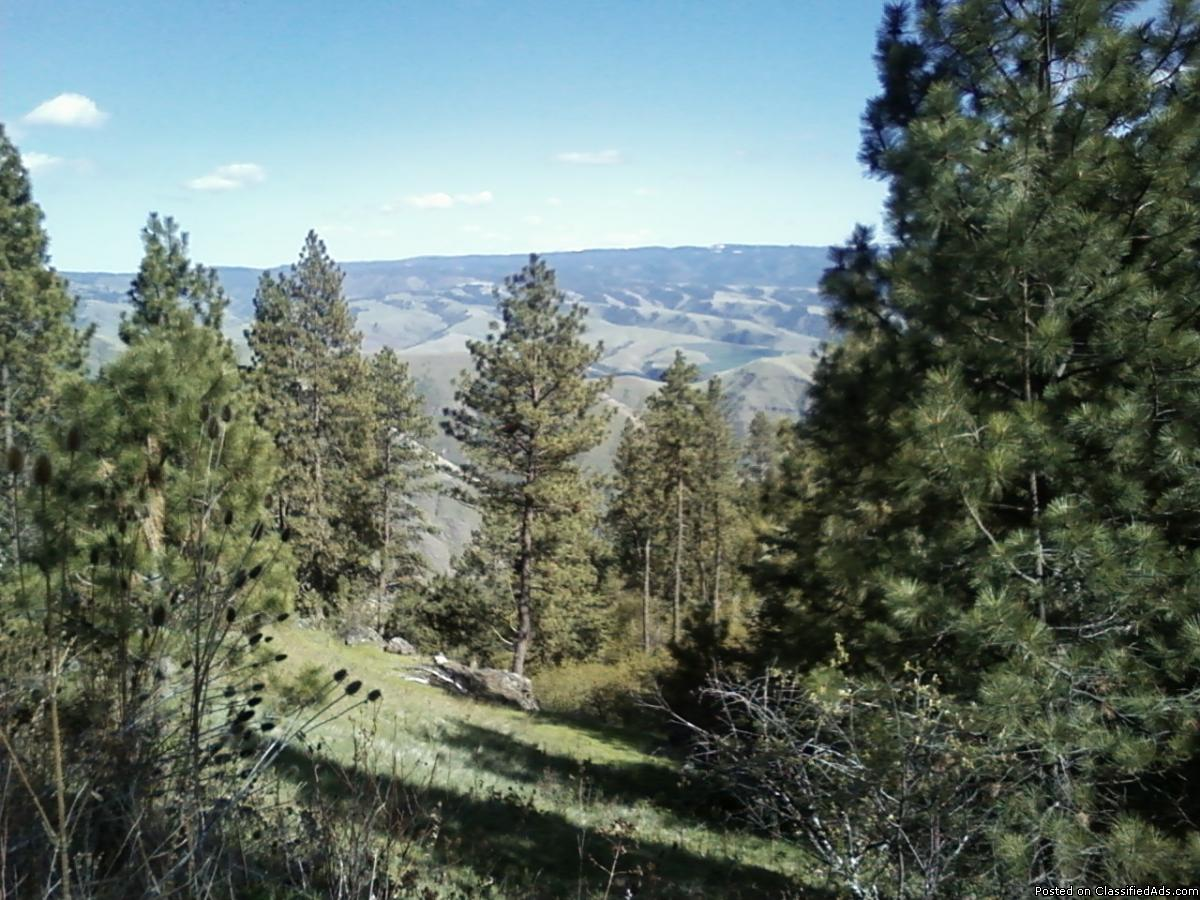 Land for Sale 280 acres