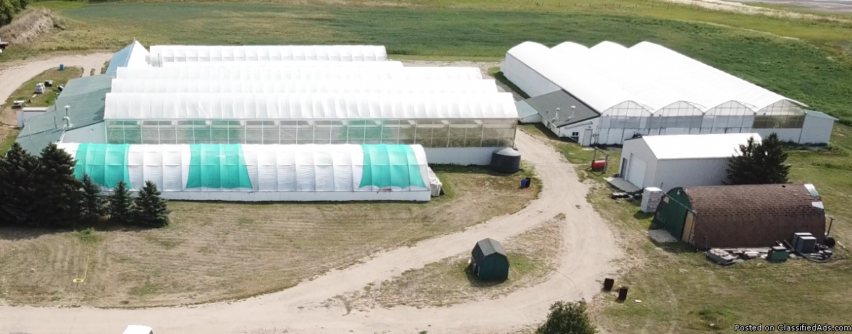 Saskatchewan Greenhouse Farm