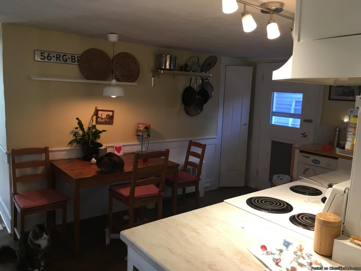 Close to coffee shops and restaurants, cozy 2 bed 1 bath,