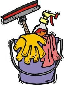 HOUSE CLEANER AVAILABLE IN FAIRPORT, NY