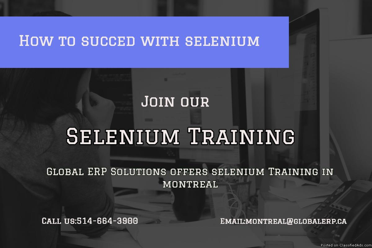Selenium Beginner level Training in Montreal