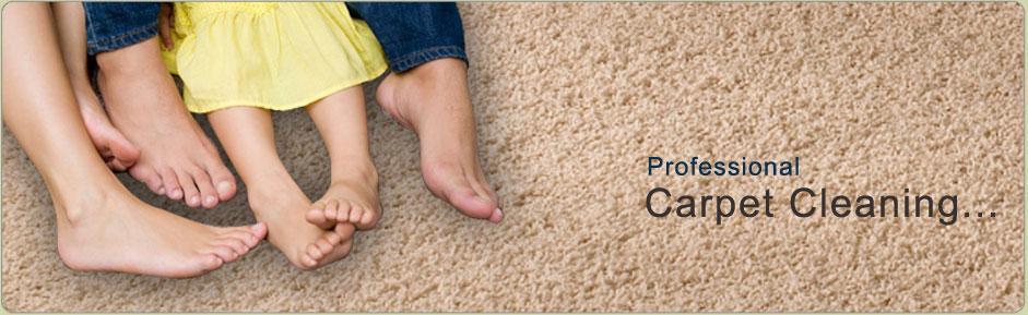 Carpet Cleaning In Hamilton Township