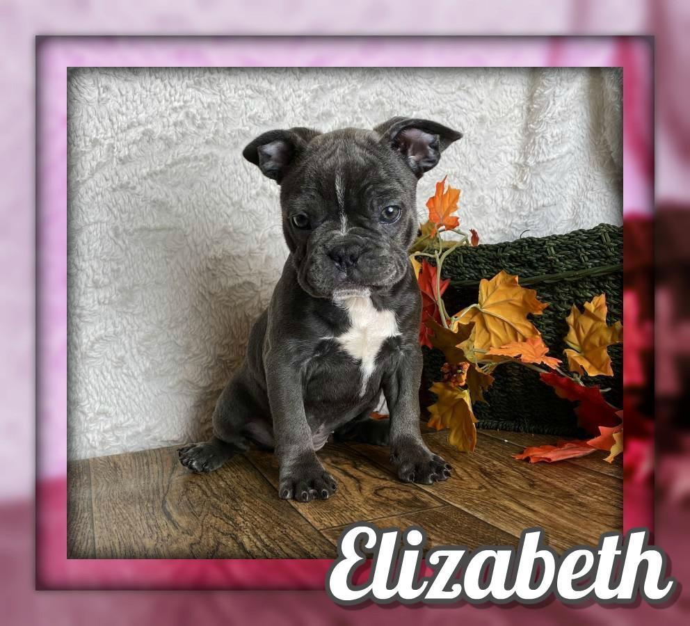 Elizabeth Female Frenchton