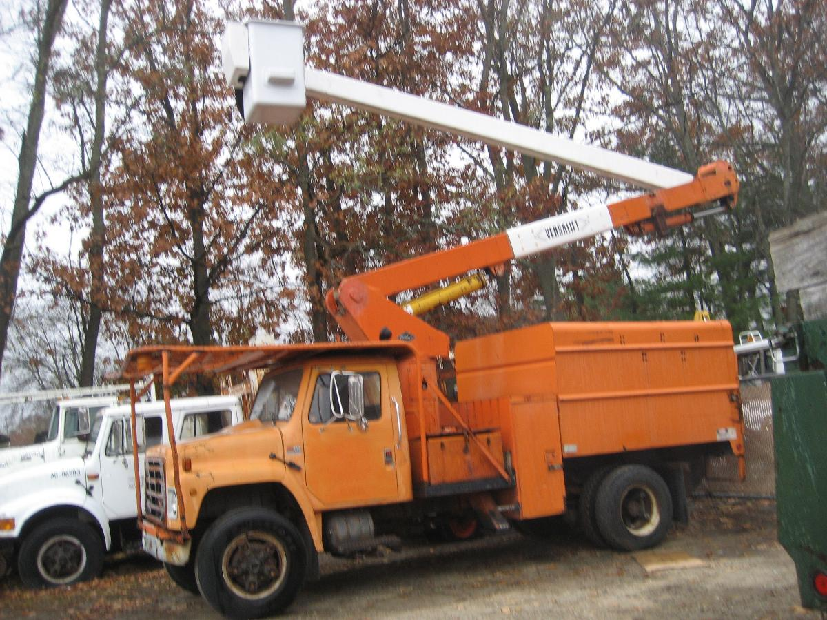 forestry tree truck