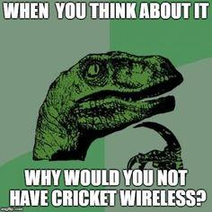 LET US SHOW U HOW U CAN SAVE $$$$$ EVERY MONTH WITH CRICKET