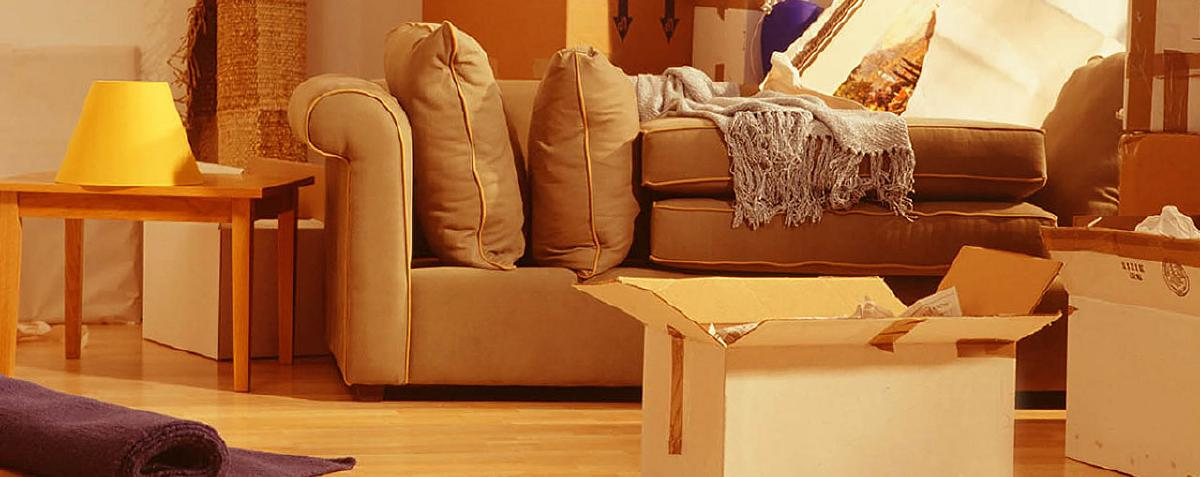 packers and movers in noida sector 66