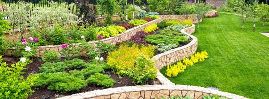 Specialists for Landscaping Services in Maple Ridge